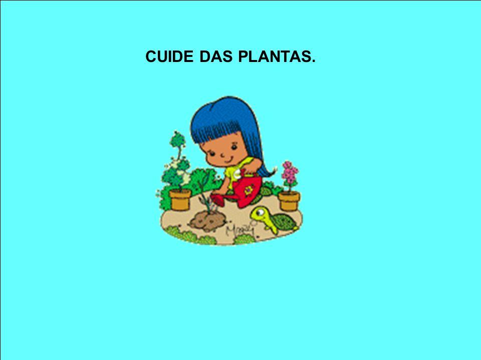 CUIDE DAS PLANTAS.