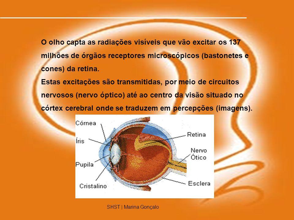 O olho capta as radiações visíveis que vão excitar os 137