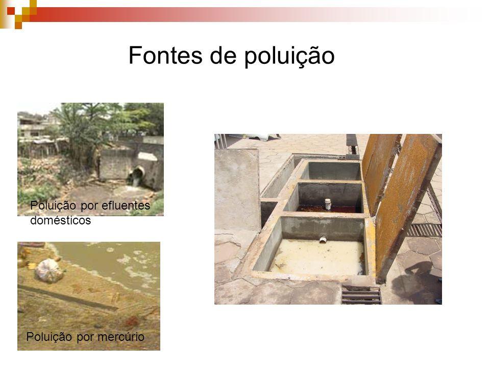 Fontes de poluição Poluição por efluentes domésticos