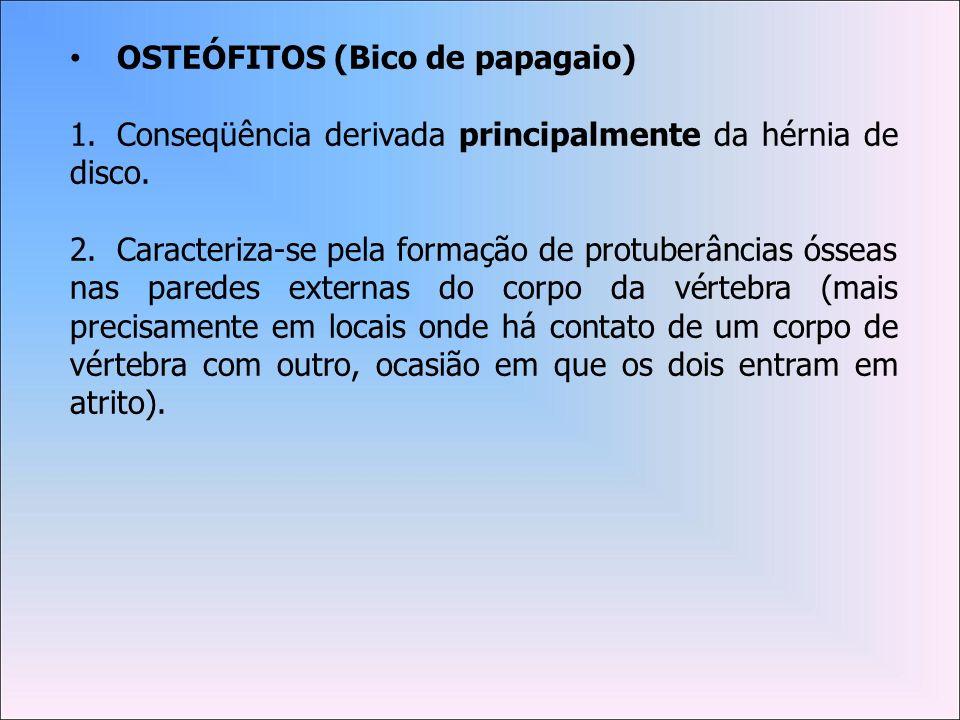 OSTEÓFITOS (Bico de papagaio)