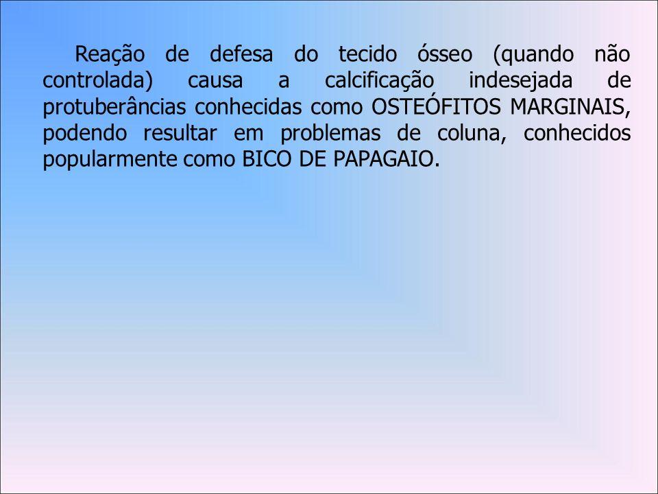 Reação de defesa do tecido ósseo (quando não controlada) causa a calcificação indesejada de protuberâncias conhecidas como OSTEÓFITOS MARGINAIS, podendo resultar em problemas de coluna, conhecidos popularmente como BICO DE PAPAGAIO.