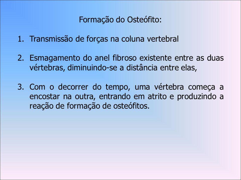 Formação do Osteófito: