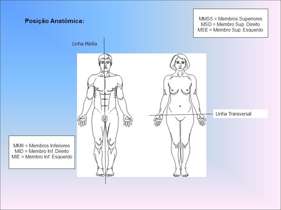 Posição Anatômica: MMSS = Membros Superiores MSD = Membro Sup. Direito