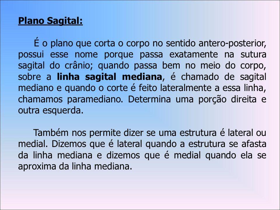 Plano Sagital: