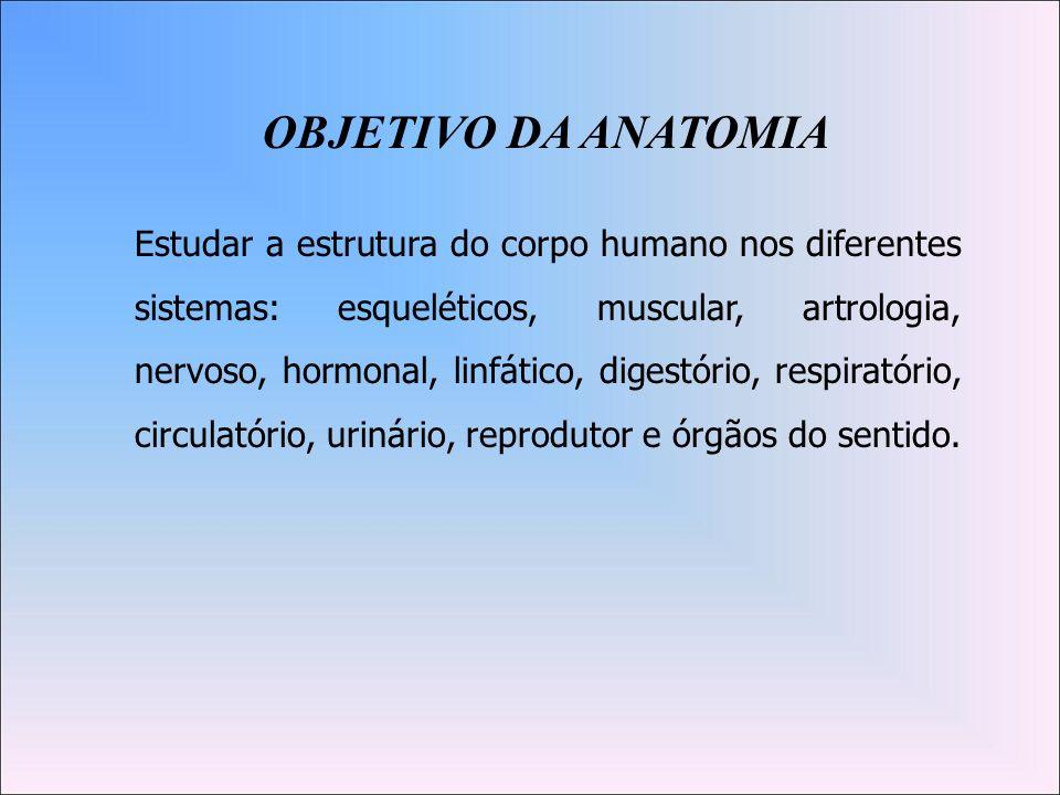 OBJETIVO DA ANATOMIA