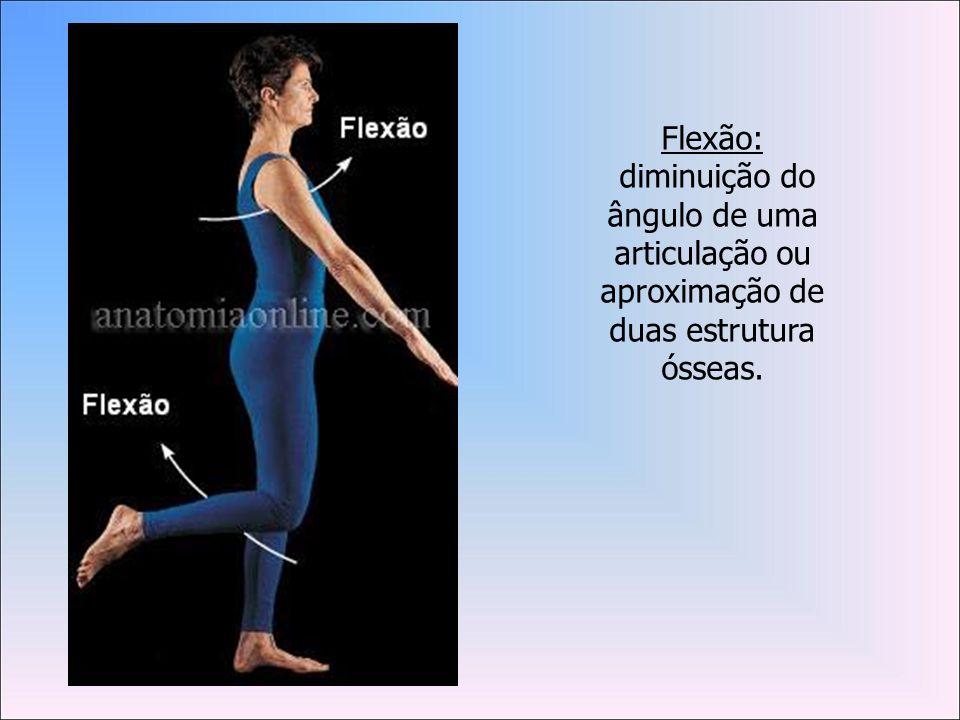 Flexão: diminuição do ângulo de uma articulação ou aproximação de duas estrutura ósseas.