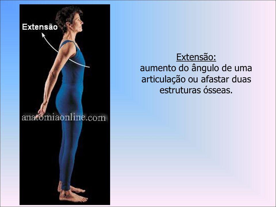 Extensão: aumento do ângulo de uma articulação ou afastar duas estruturas ósseas.