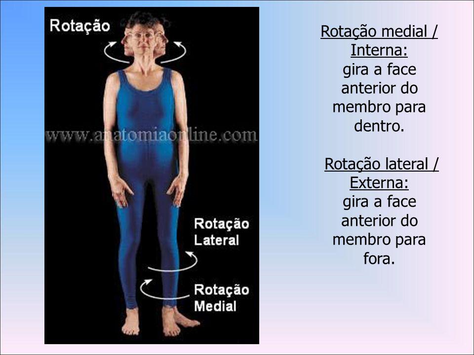 Rotação medial / Interna: gira a face anterior do membro para dentro.