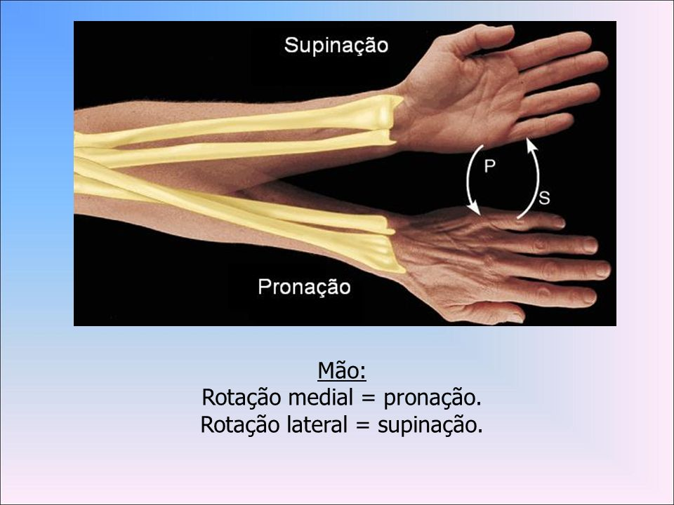 Rotação medial = pronação. Rotação lateral = supinação.
