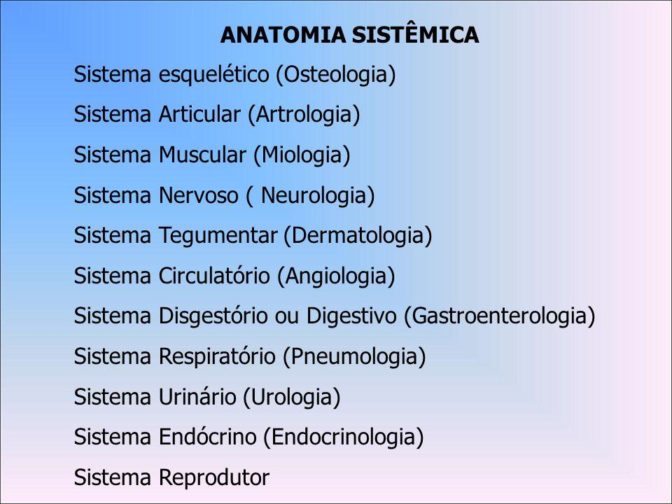 ANATOMIA SISTÊMICASistema esquelético (Osteologia) Sistema Articular (Artrologia) Sistema Muscular (Miologia)