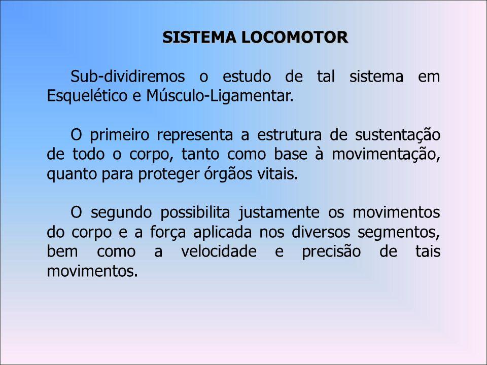 SISTEMA LOCOMOTORSub-dividiremos o estudo de tal sistema em Esquelético e Músculo-Ligamentar.