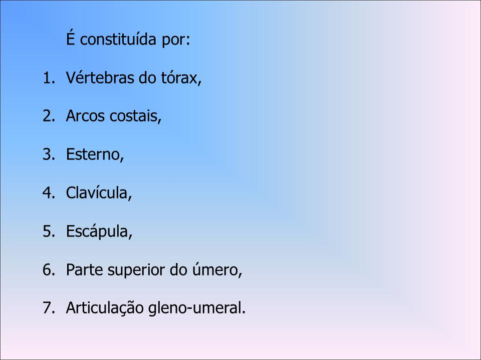 É constituída por: Vértebras do tórax, Arcos costais, Esterno, Clavícula, Escápula, Parte superior do úmero,