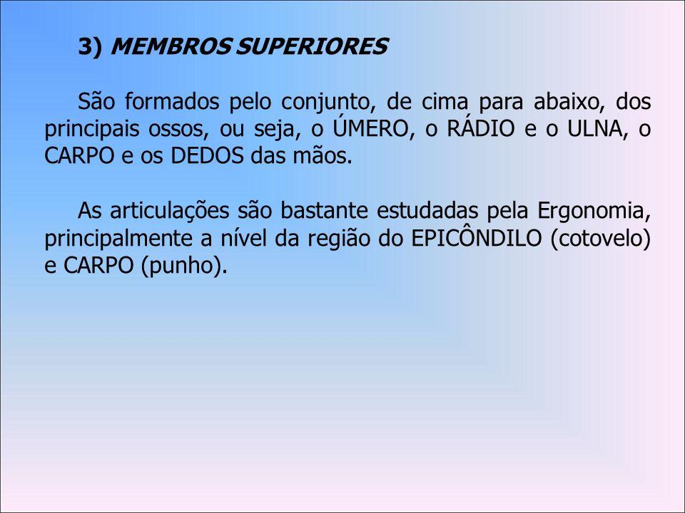 3) MEMBROS SUPERIORES