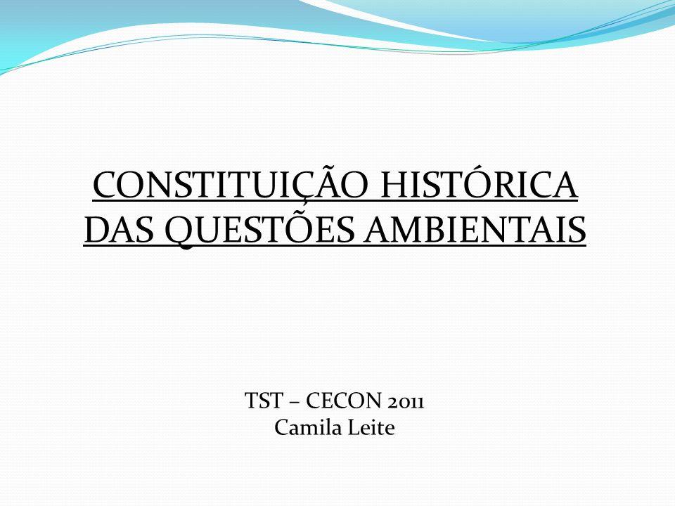 CONSTITUIÇÃO HISTÓRICA DAS QUESTÕES AMBIENTAIS