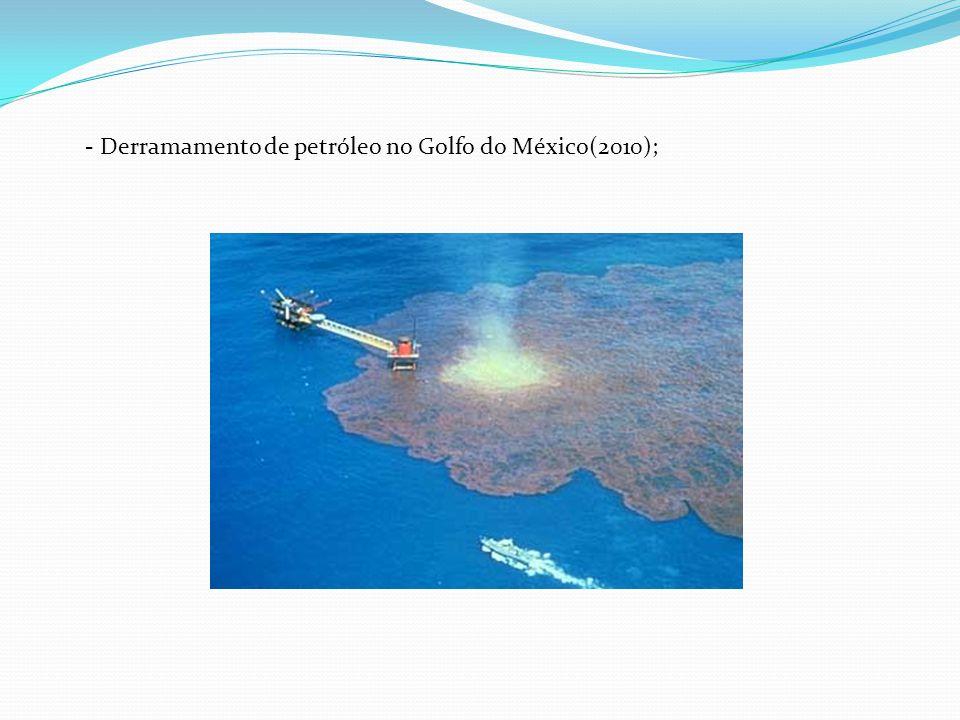 Derramamento de petróleo no Golfo do México(2010);