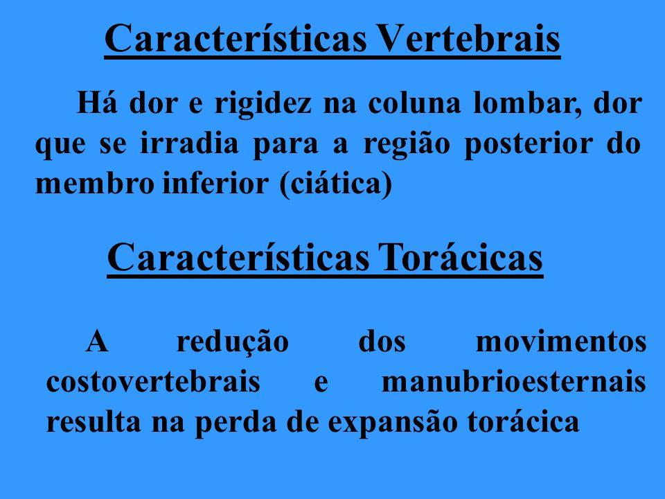 Características Vertebrais