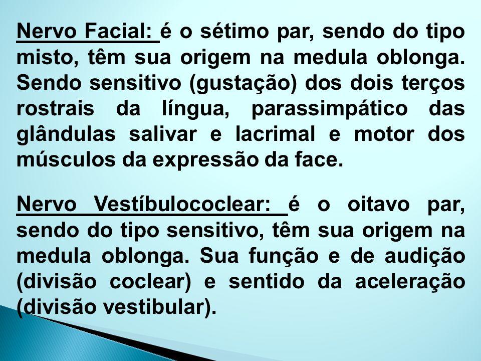 Nervo Facial: é o sétimo par, sendo do tipo misto, têm sua origem na medula oblonga. Sendo sensitivo (gustação) dos dois terços rostrais da língua, parassimpático das glândulas salivar e lacrimal e motor dos músculos da expressão da face.