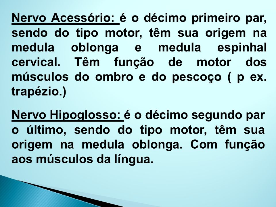 Nervo Acessório: é o décimo primeiro par, sendo do tipo motor, têm sua origem na medula oblonga e medula espinhal cervical. Têm função de motor dos músculos do ombro e do pescoço ( p ex. trapézio.)