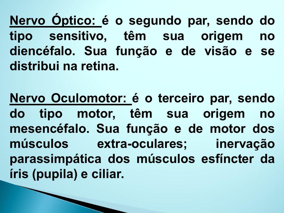 Nervo Óptico: é o segundo par, sendo do tipo sensitivo, têm sua origem no diencéfalo. Sua função e de visão e se distribui na retina.