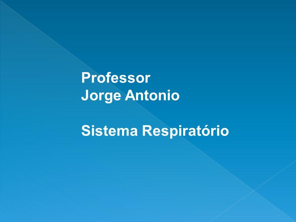 Professor Jorge Antonio Sistema Respiratório