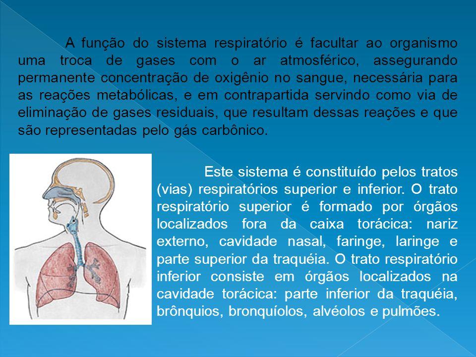 A função do sistema respiratório é facultar ao organismo uma troca de gases com o ar atmosférico, assegurando permanente concentração de oxigênio no sangue, necessária para as reações metabólicas, e em contrapartida servindo como via de eliminação de gases residuais, que resultam dessas reações e que são representadas pelo gás carbônico.