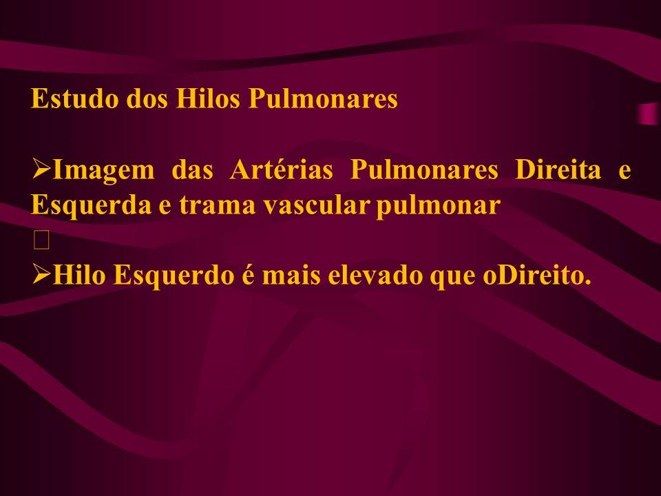 Estudo dos Hilos Pulmonares