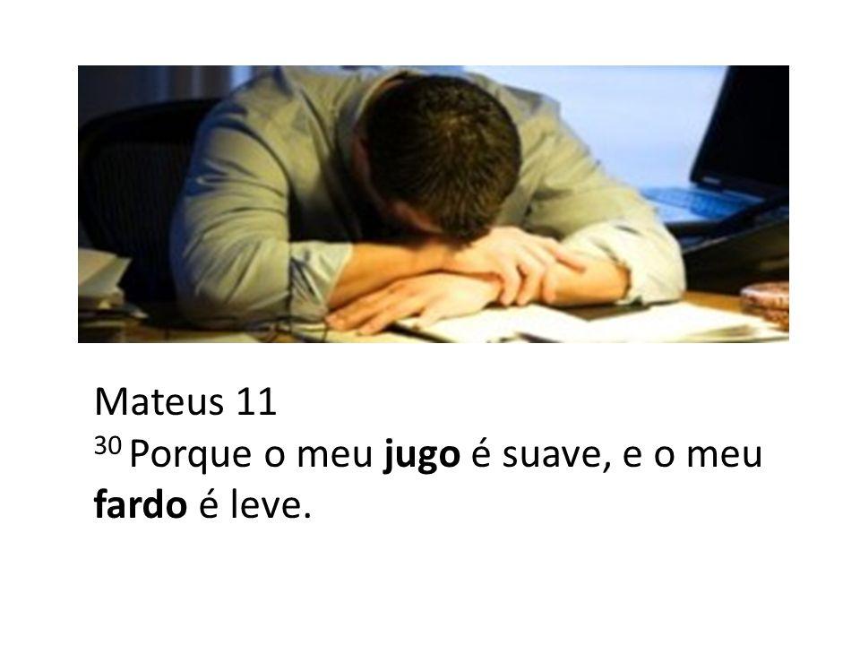 Mateus 11 30 Porque o meu jugo é suave, e o meu fardo é leve.