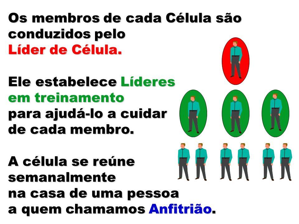 Os membros de cada Célula são