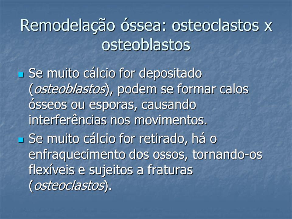Remodelação óssea: osteoclastos x osteoblastos