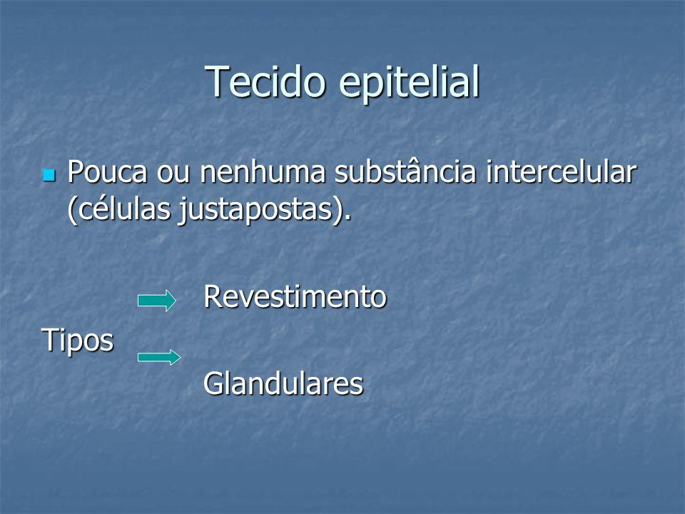 Tecido epitelial Pouca ou nenhuma substância intercelular (células justapostas). Revestimento. Tipos.