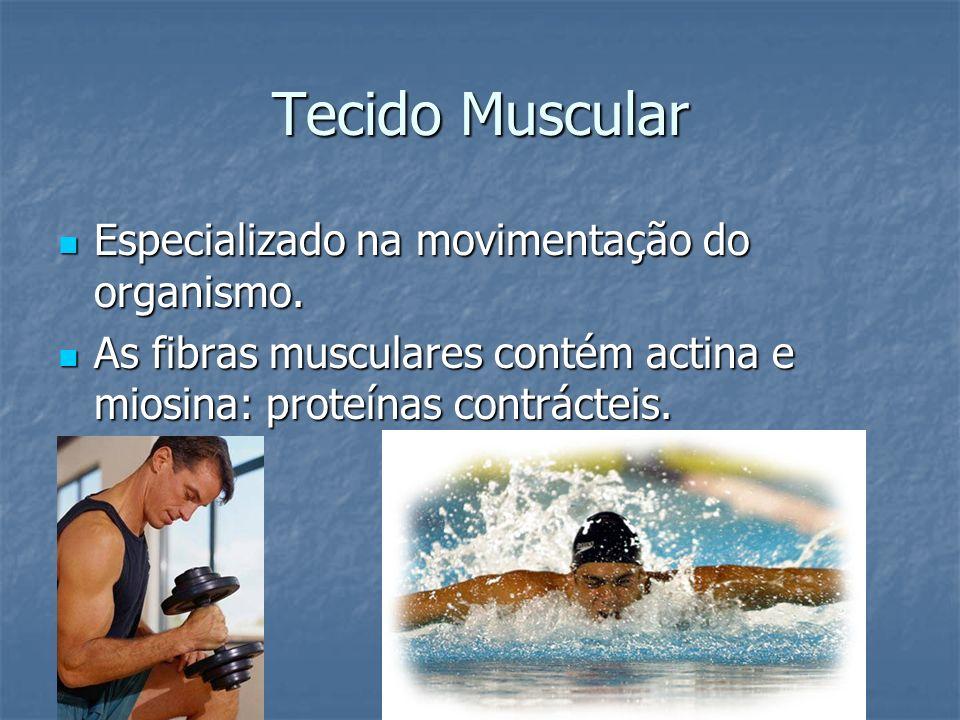 Tecido Muscular Especializado na movimentação do organismo.