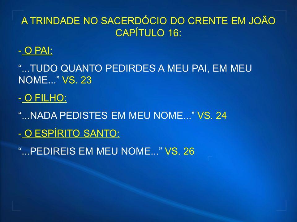 A TRINDADE NO SACERDÓCIO DO CRENTE EM JOÃO CAPÍTULO 16: