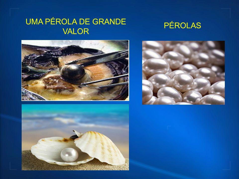 UMA PÉROLA DE GRANDE VALOR
