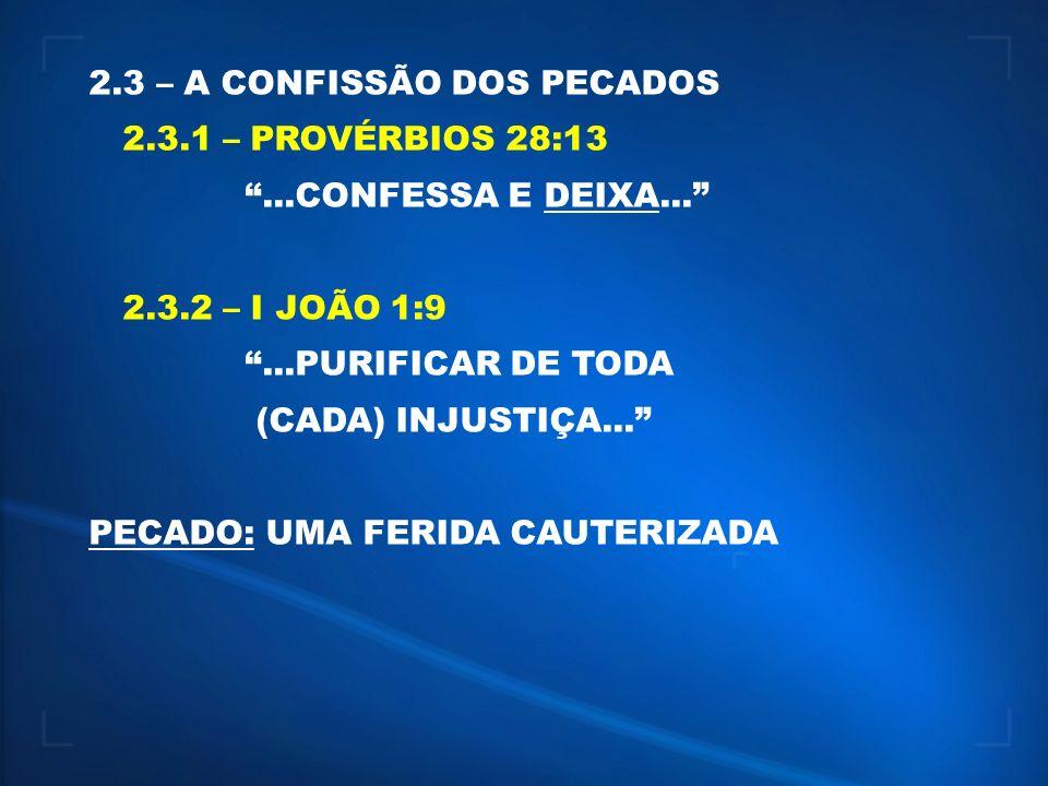 2.3 – A CONFISSÃO DOS PECADOS