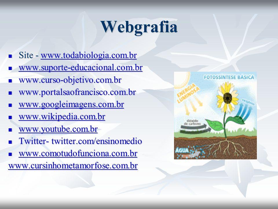 Webgrafia Site - www.todabiologia.com.br
