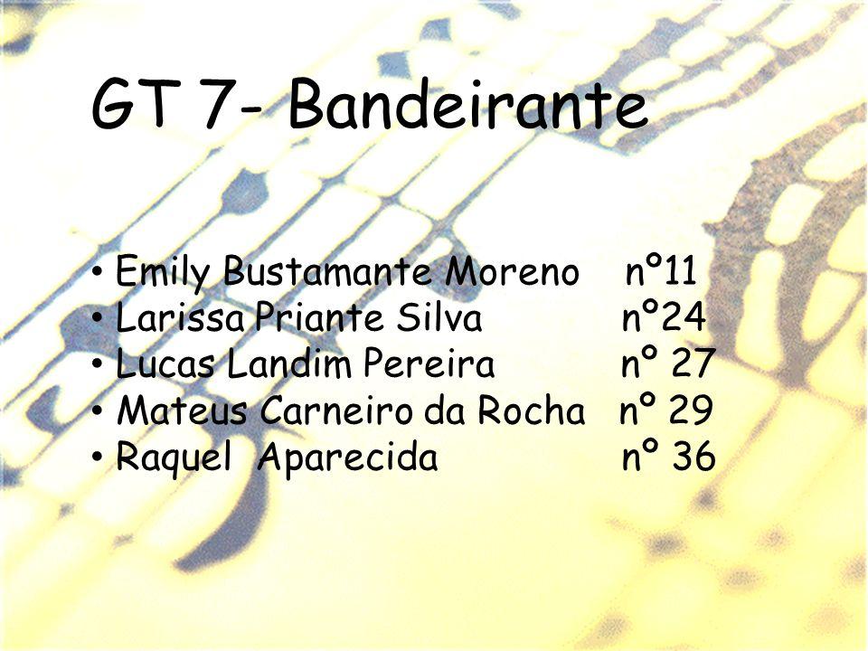 GT 7- Bandeirante Emily Bustamante Moreno nº11