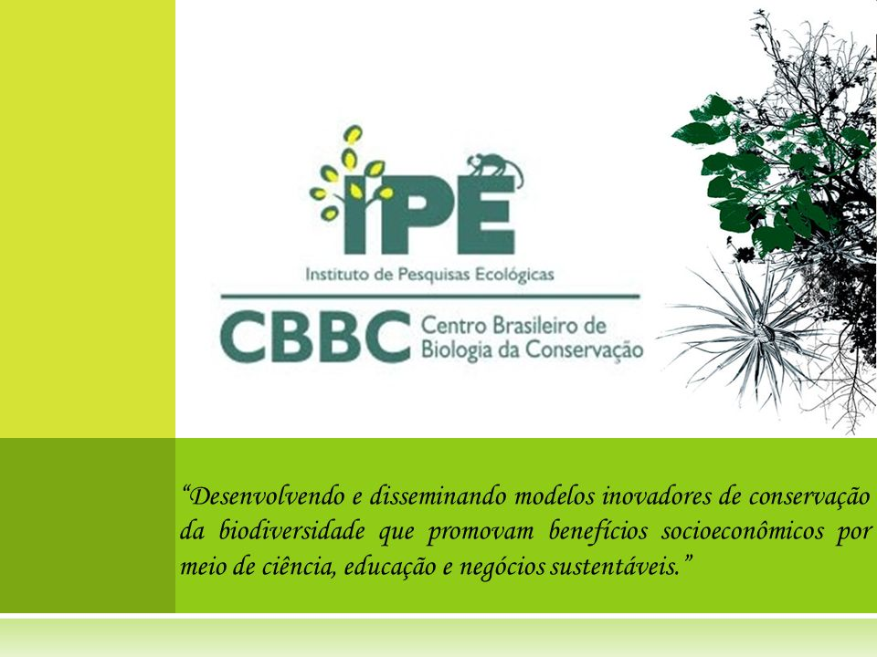 Desenvolvendo e disseminando modelos inovadores de conservação da biodiversidade que promovam benefícios socioeconômicos por meio de ciência, educação e negócios sustentáveis.