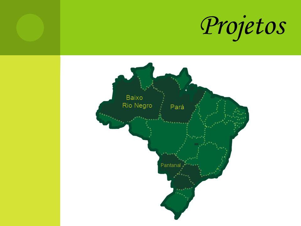 Projetos Baixo Rio Negro Pará Pantanal