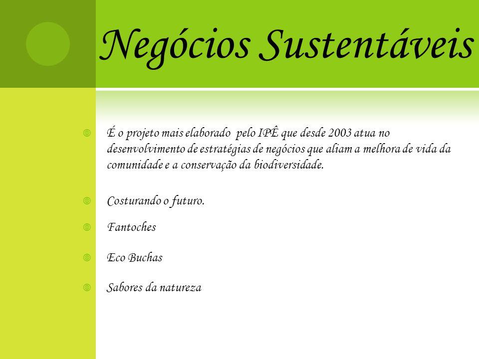 Negócios Sustentáveis