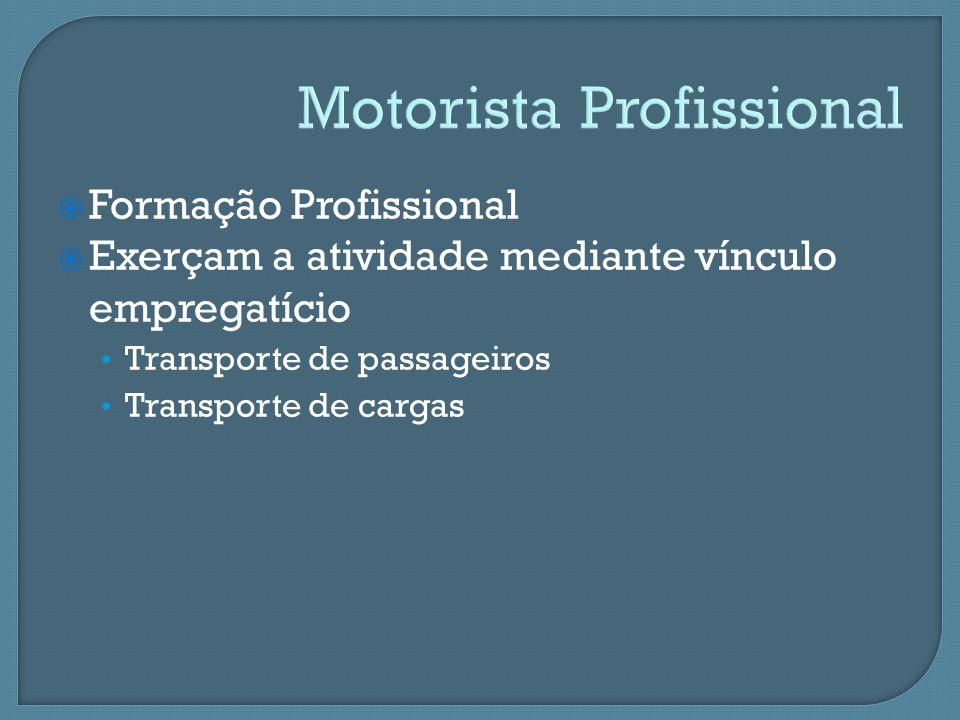 Motorista Profissional