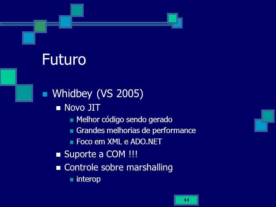 Futuro Whidbey (VS 2005) Novo JIT Suporte a COM !!!