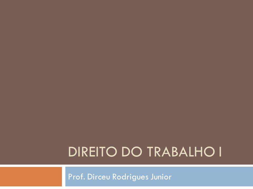 Prof. Dirceu Rodrigues Junior