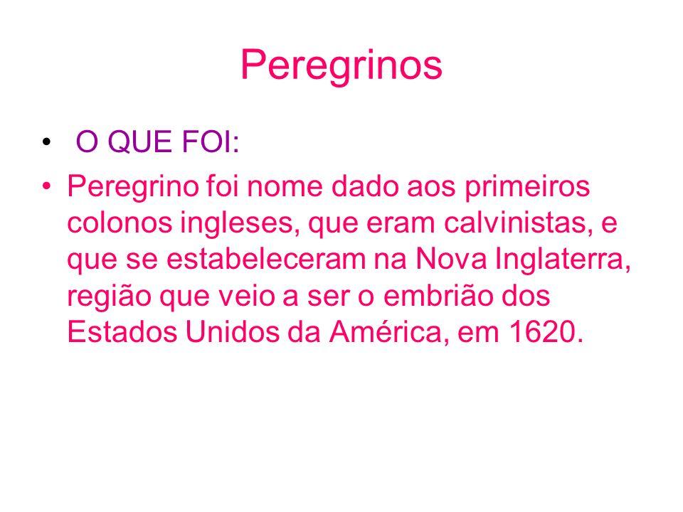 Peregrinos O QUE FOI:
