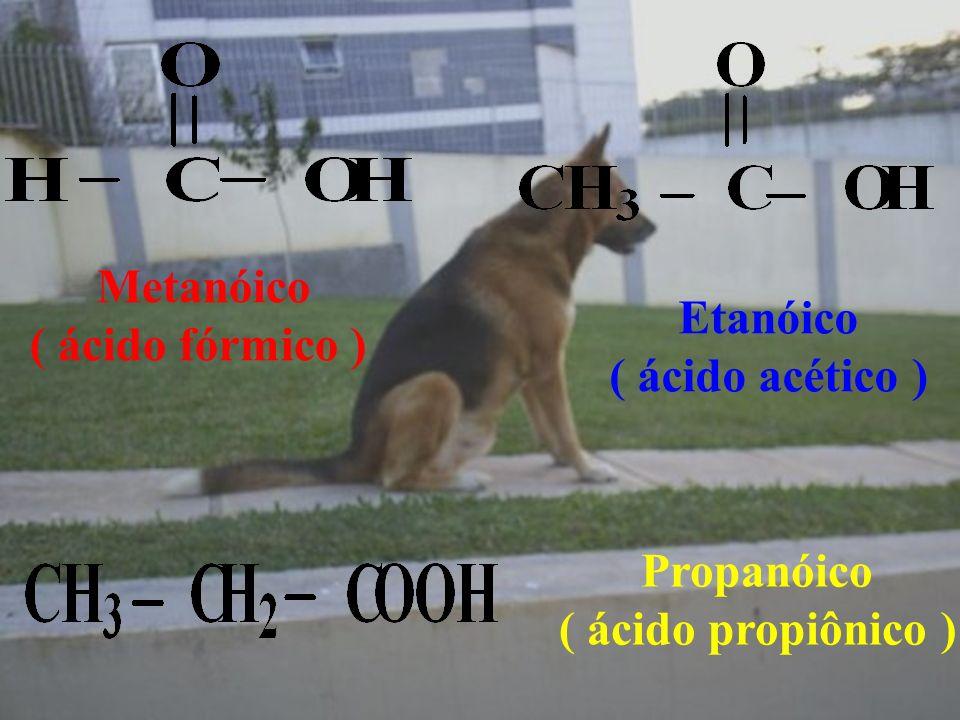 Metanóico ( ácido fórmico ) Etanóico ( ácido acético ) Propanóico