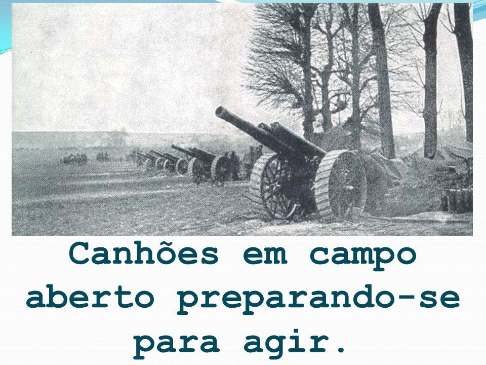Canhões em campo aberto preparando-se para agir.