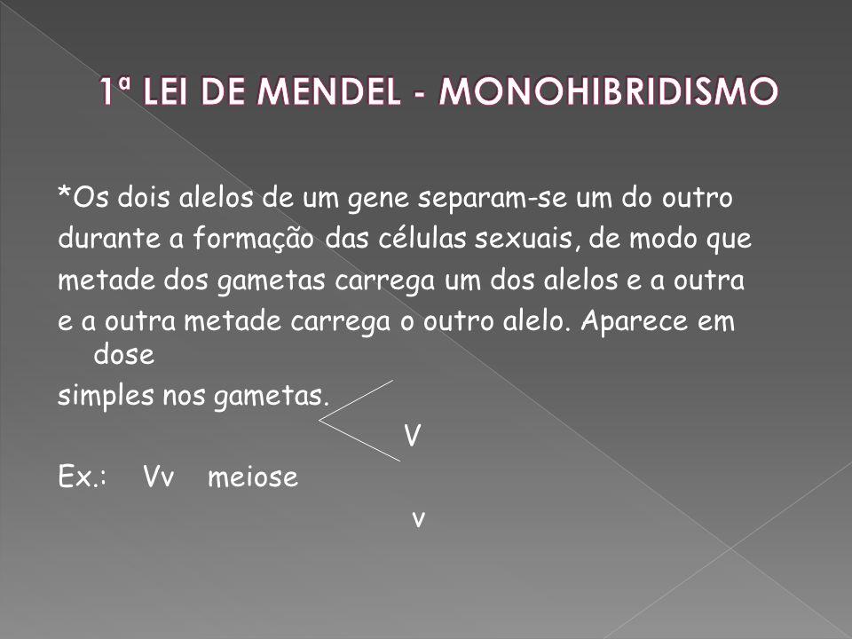 1ª LEI DE MENDEL - MONOHIBRIDISMO