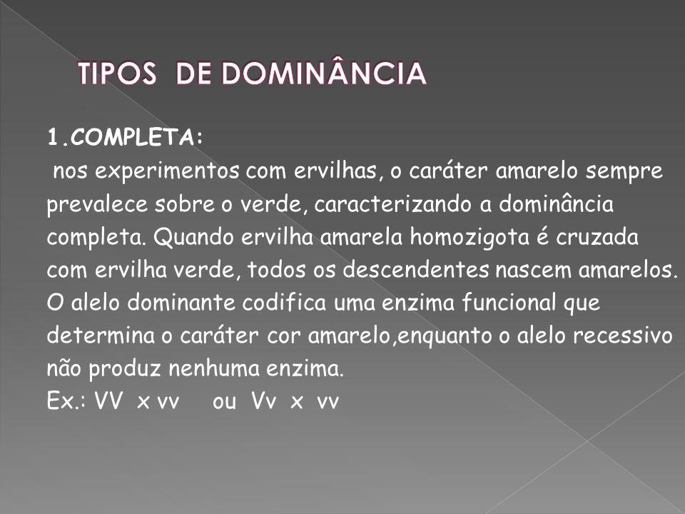 TIPOS DE DOMINÂNCIA