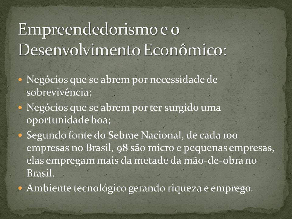 Empreendedorismo e o Desenvolvimento Econômico: