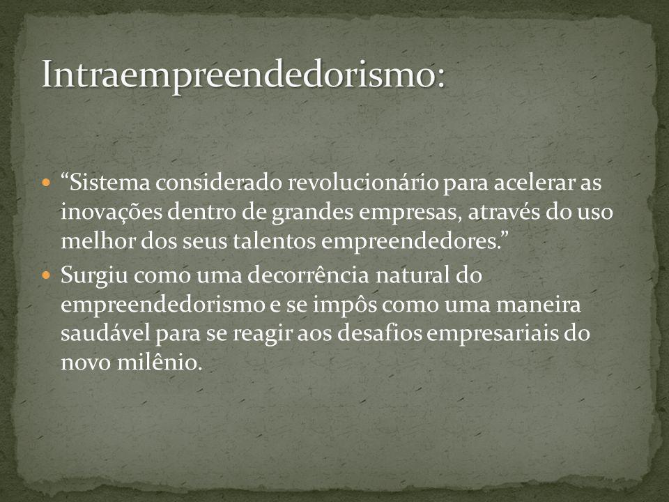 Intraempreendedorismo: