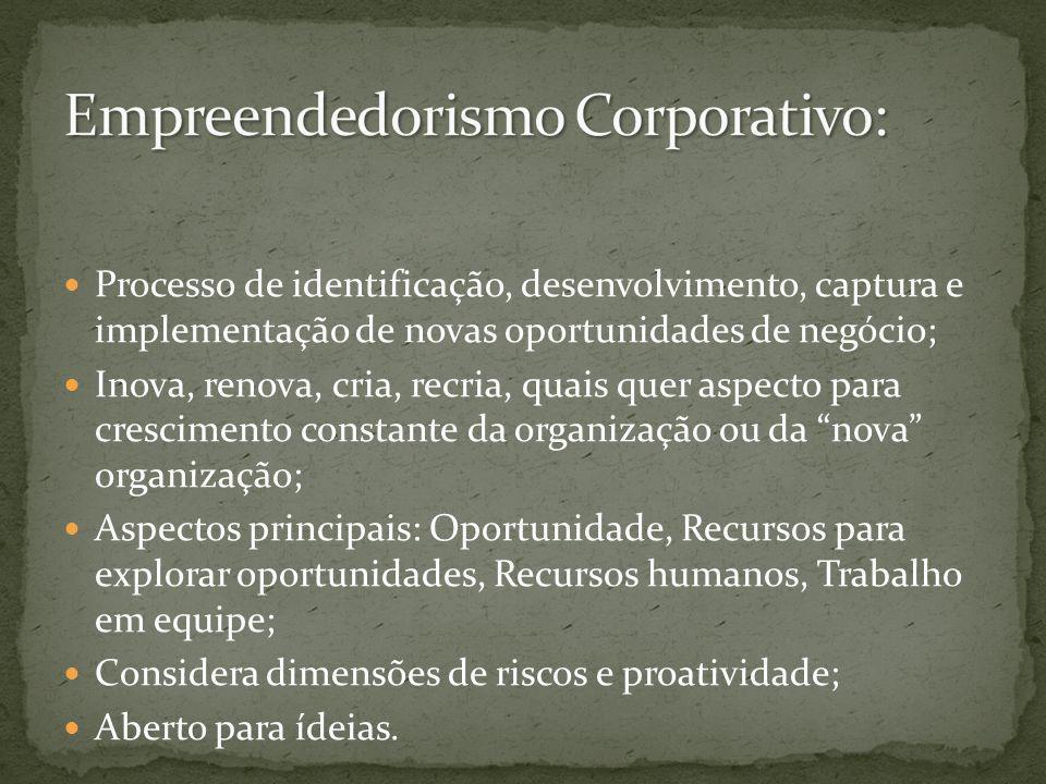 Empreendedorismo Corporativo: